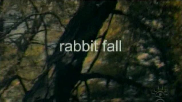 Rabbit Fall.jpg